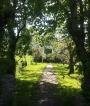 Sommaridyll i Göteborgs skärgård - stora lummiga trädgårdar.